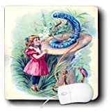 3dRose LLC 8 x 8 x 0.25 Inches Alice in Wonderland with Caterpillar in Color Mouse Pad (mp_153723_1)