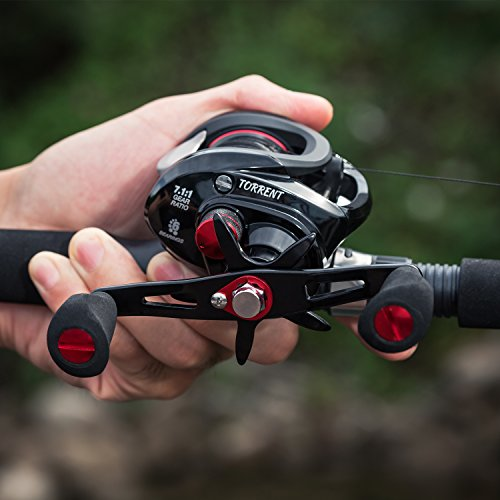 Piscifun Torrent Baitcasting Reel