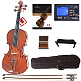 Best Full Size Violins - Cecilio CVN-200 Solidwood Violin with D'Addario Prelude Strings Review