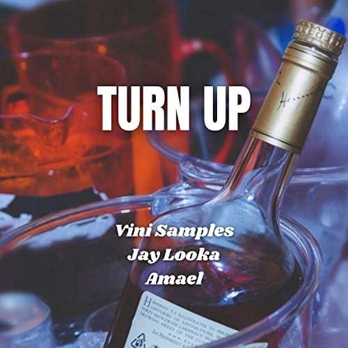 Vini Samples feat. Jay Looka & Amael
