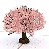 Lovepop Cherry Blossom Classic Pop Up Card - 3D Card, Mother's Day Card, Pop Up Mother's Day Call, Card for Wife,...