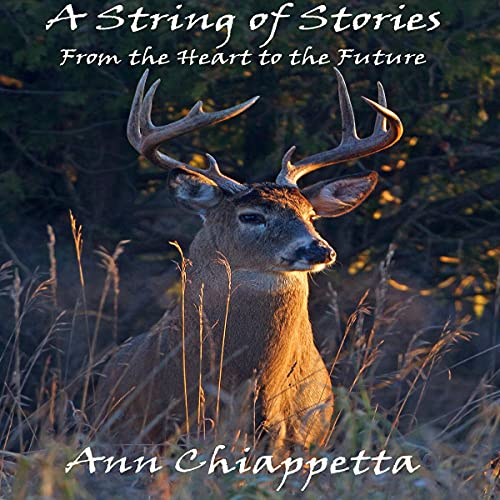 A String of Stories Audiobook By Ann Chiappetta cover art