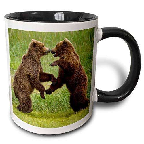 Alaska, Katmai NP, Brown Bear, Hello Bay Paul Souders - Taza de dos tonos, 11 oz, negro/blanco