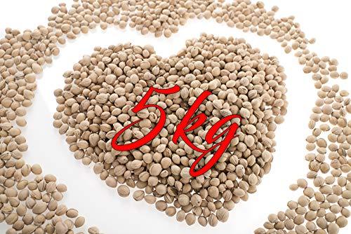 5 KG lose Kirschkerne zur Kissenfüllung für Wärmekissen