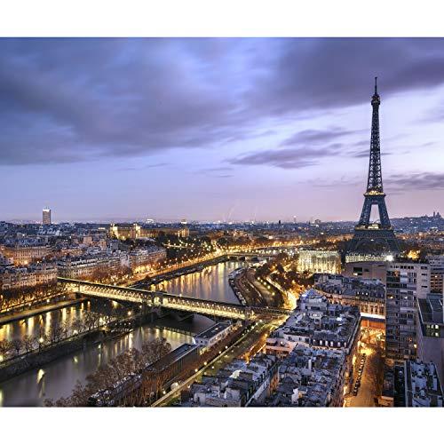 decomonkey Fototapete Paris Stadt 350x256 cm XL Tapete Fototapeten Tapeten Wandtapete moderne Wand Schlafzimmer Wohnzimmer Eiffelturm Architektur Frankreich