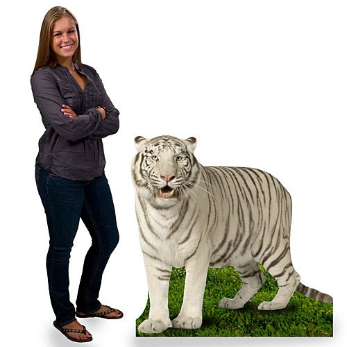 3 ft. 10 in. Jungle Safari White Tiger Cardboard Cutout Standee Standup Prop Party Supplies Decorations Decor Backdrop Background