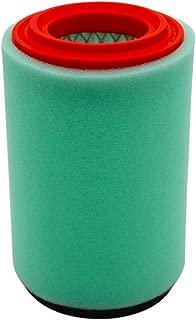 Air Filter Cleaner 1P0-E4450-00-00 4XE-E4450-00-00 Replacement for Yamaha Bear Tracker 250 YFM250X YFM250B YFM250XH 1999-2004 Bruin 250 YFM250B 2005-2006