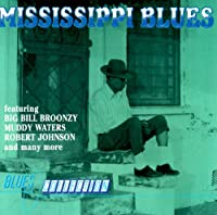 Bukka White, Charlie Patton, Big Billy Broonzy, Robert Johnson, Mississippi John Hurt..