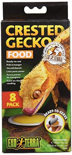 Exo Terra Essen für Gecko Crestado - 8 Stück