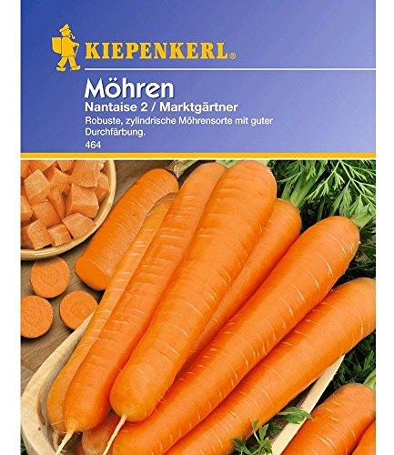 Möhren 'Nantaise 2 Marktgärtner',1 Portion