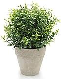 Velener Artificial Plants Mini Potted Grass Arrangements for Home Decor (Green, Seven-Layer) artificial grass Apr, 2021