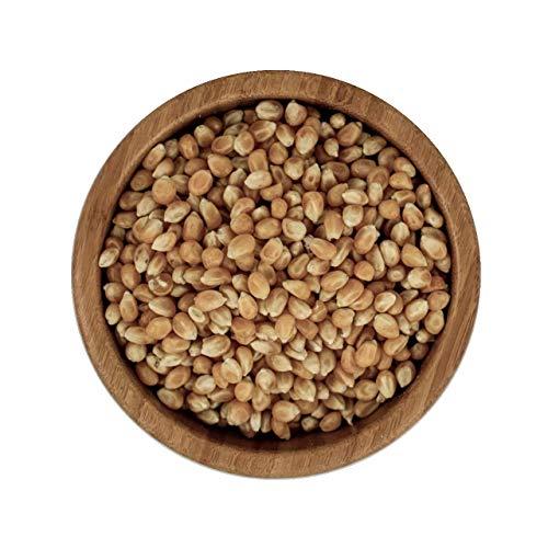 ecoterra Bio Popcorn Mais | getrocknete Maiskörner | Vorratspackung | 2,5 kg