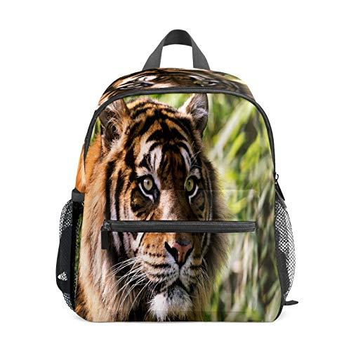 Mochila infantil para niños de 1 a 6 años de edad, mochila perfecta para niños y niñas en el jardín de infancia, tigre vista cerca de la foto