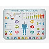 Fanqi Alfombrilla de baño anatómica Médica de composición médica con características de Salud Humana y de órganos Almohadilla de baño Antideslizante 40x60cm