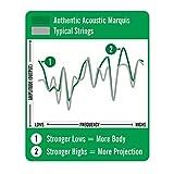 Immagine 2 authentic acustica sp 80 20