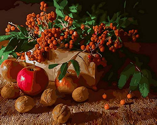 Wzxzf Pintar por números Mesa de Frutas La Pintura al óleo Digital se Puede Utilizar para la decoración de Arte de Pared de 40 x 50 cm (sin Marco)