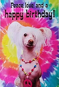 Peace Love and Happy Birthday Hippie Psychedelic Rainbow Design Greeting Card with Powder Puff Chinese Crested Dog