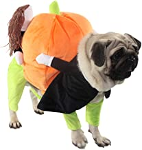 BRKURLEG Funny Dog Cat Clothes, Carrying Pumpkin Halloween Fancy Jumpsuit Puppy Costume, Doll Pet Cat Costumes Funny Halloween Party Holiday Clothes in Winter, for Pet Dogs, Cats.