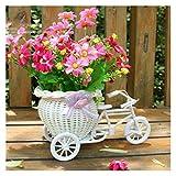 JSJJAQA Maceteros Bicicleta en Forma de Flor Cesta de jardín Decoración de jardín Plástico Triciclo Blanco Diseño de Bicicleta Cesta Cesta de Almacenamiento Potes de decoración (Color : White)