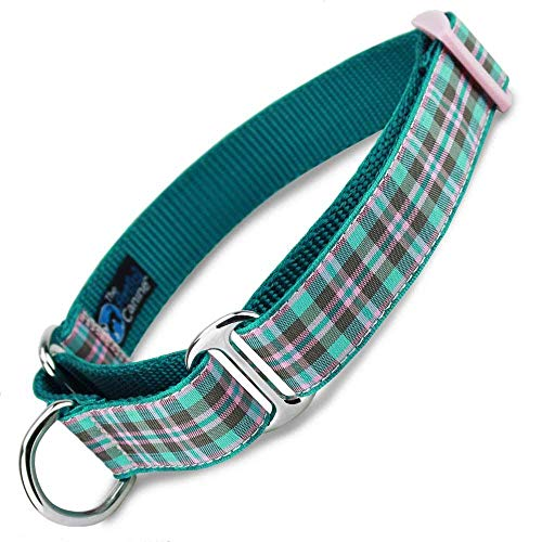 The Artful Canine Preppy Puppy Plaid Martingale Dog Collar, Small Dogs 11 22lbs (Collar: 5/8