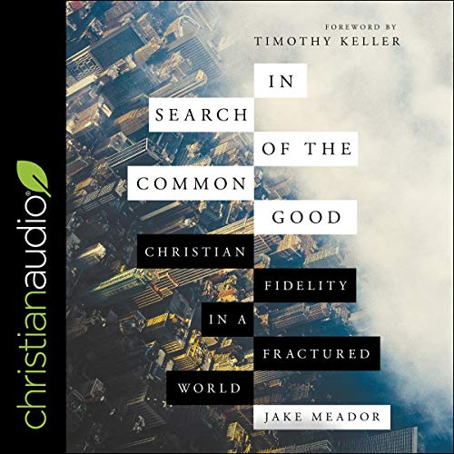In Search of the Common Good audiobook cover art