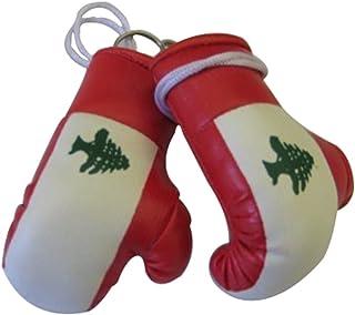 Lebanon Mini Small Boxing Gloves - 1 Piece