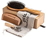 Best Hairbrush For Men - Boar Bristle Hair Brush Set for Women Review