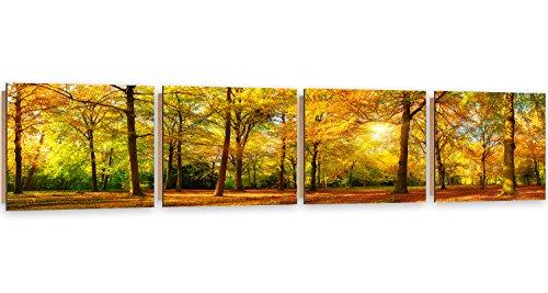 Feeby Frames, Tableau Mural - 4 Parties - Panoramique, Tableau Déco, Tableau imprimé, Tableau Deco Panel, 30x120 cm, FORÊT, Arbre, Nature, Soleil, Brun, Vert