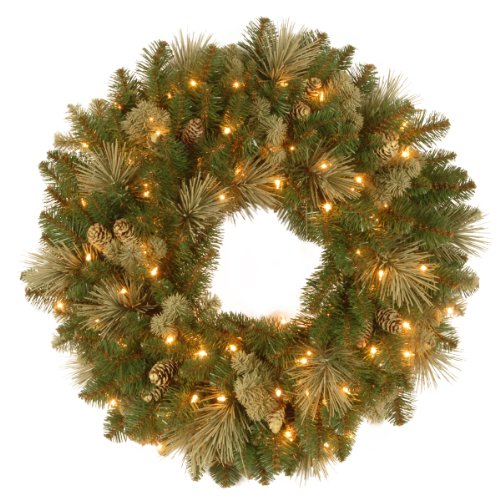 National Tree Company Pre-lit Artificial Christmas Wreath   Flocked with Cones and Pre-strung White Lights   Carolina Pine - 24 Inch