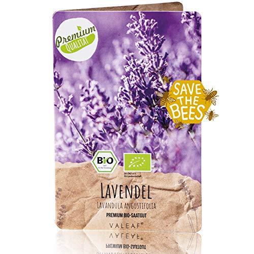 Lavendel Samen BIO I 400 Stück I Premium Samen mehrjährig I 400 prächtige Lavendelpflanzen winterhart I Echter Lavendel I Lavandula angustifolia I Lavendel Pflanzen winterhart I Lavendel Pflanze
