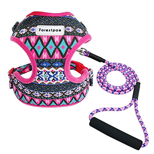 Forestpaw Multi-Colored Stylish Dog Walking Vest Harness and Leash Set- Vintage Tribal Pattern No Pull Dog Harness for Walking Small Medium Dogs,Hot Pink,S