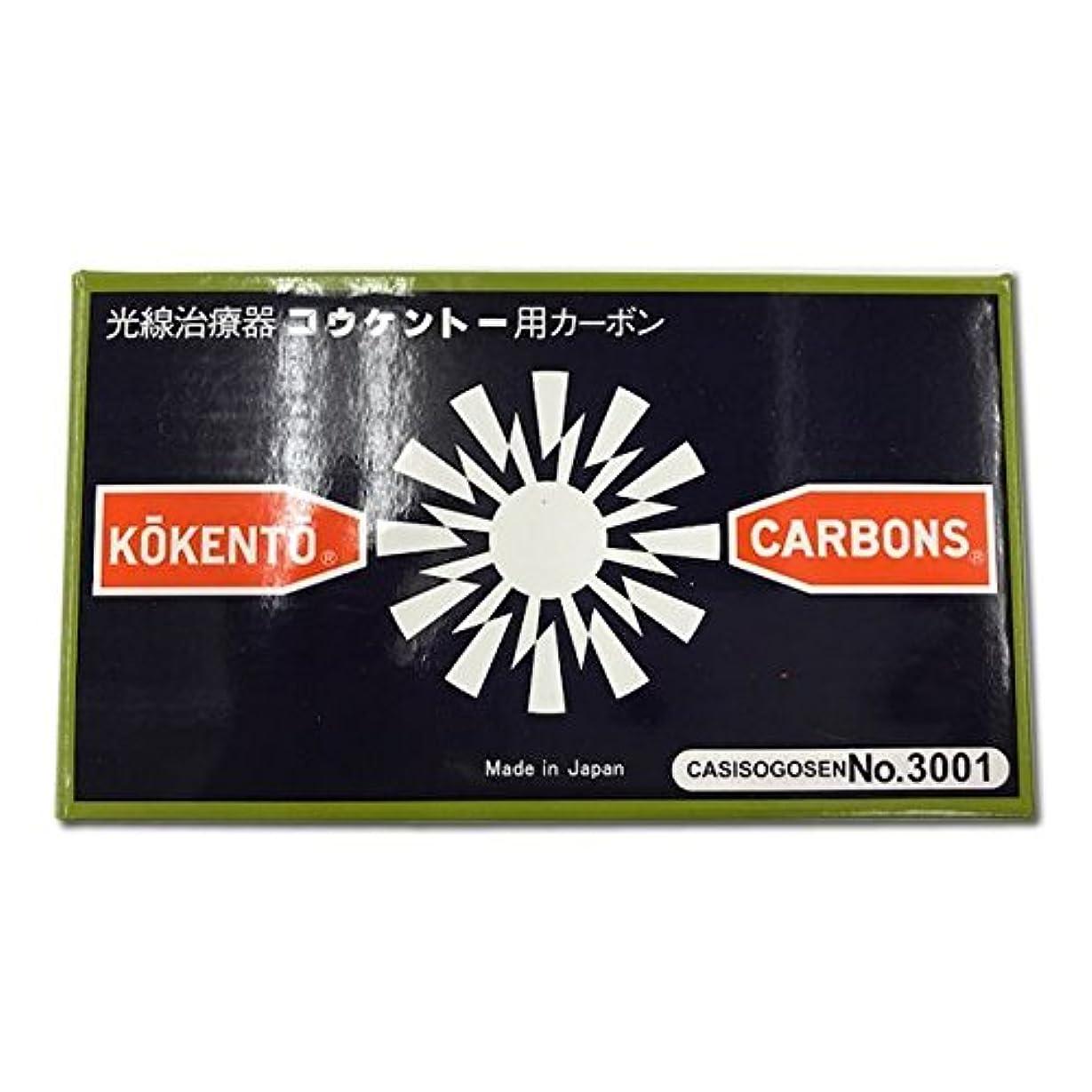 チャート代数可塑性コウケントーカーボン No3001 50本