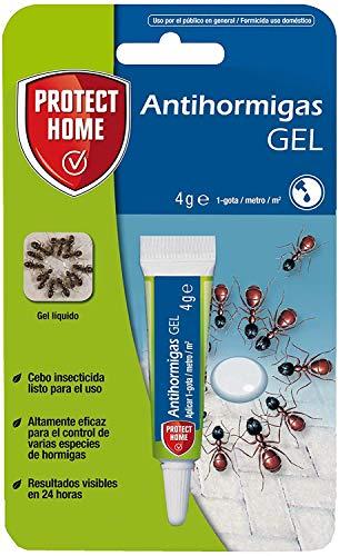 PROTECT HOME Antihormigas Cebo en Gel contra Hormigas para I