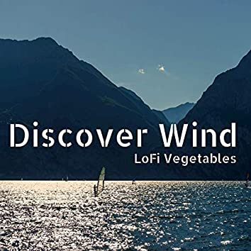 Discover Wind