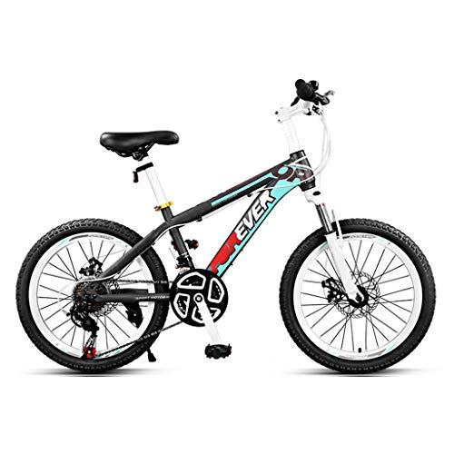 JXJ 22 Inch Mountain Bike, 24 Speed High Carbon Steel Bicycle Full Suspension MTB Bikes with Dual Disc Brake, for Men/Women