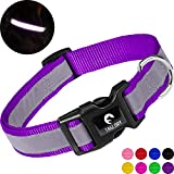 Taglory Reflective Dog Collar, Adjustable Nylon Dog Collar for Puppy, Purple