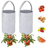Upside Down Tomato Planter-Felt Plant Grow Bag for Tomatoes Strawberry Flower and Other Vegetables (2- Pack) Hooks Included
