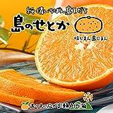 希望の島 せとか 5kg 訳あり品 サイズ込 愛媛 中島産 みかん 柑橘