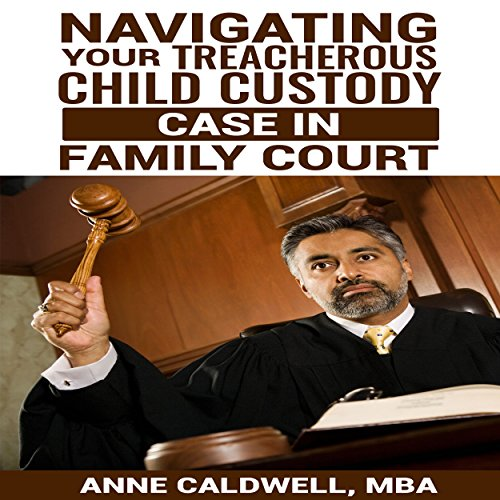 Navigating Your Treacherous Child Custody Case in Family Court audiobook cover art