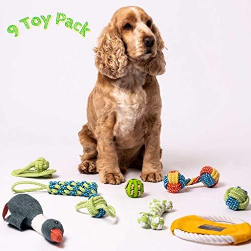 Hundespielzeug-Set und Welpen-Spielzeug, 9-er Pack, mit Quietschelement, interaktives Hundespielzeug für Langeweile und Zähnereinigung – Hundezubehör, Seil, Kauen und Welpen-Leckerlis, Welpen-Zubehör