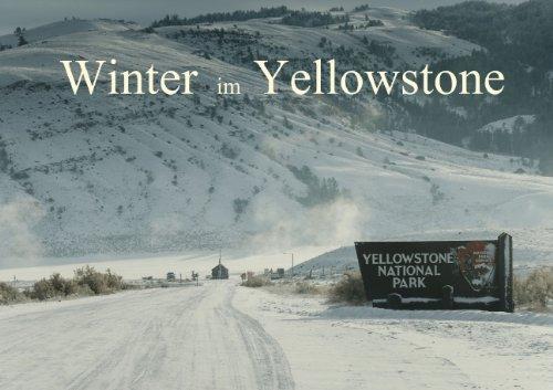 Winter im Yellowstone (Posterbuch DIN A3 quer)