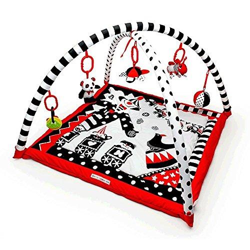 Black, White & Red Activity 3D P...