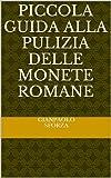 Piccola guida alla pulizia delle monete romane