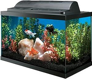 All Glass Aquarium AAG09009 Tank and Eco Hood Combo  10-Gallon