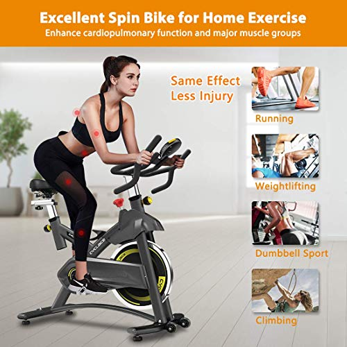 Cyclace Exercise Bike Stationary 330 Lbs Weight Capacity- Indoor Cycling Bike