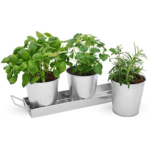 Vintage Galvanized Windowsill Planter Set