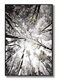 lamplig Forest Wall Art Large Grey Tree Pictures Black and White Gray Canvas Prints Hand Painted Oil Paintings Gold Leaf Framed Nature Artwork Vertical Home Decor for Living Room Bedroom 32'x48'