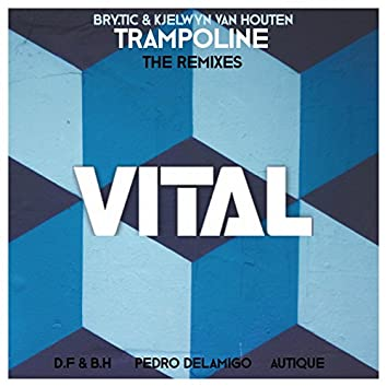 Trampoline - The Remixes