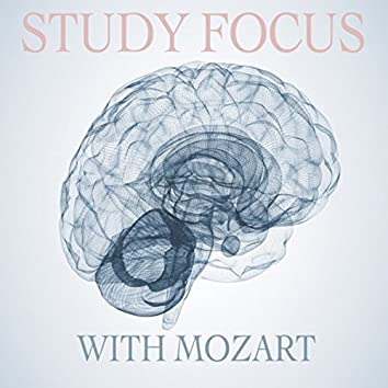 Study Focus with Mozart