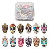 Cheriswelry 48 colgantes de aleación esmaltada, diseño de búho,...
